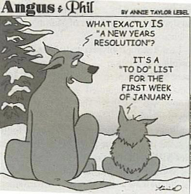 Dogs and resolutions